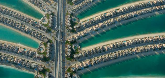 صورة جديد مشروع جزيرة النخلة في دبي