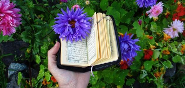 صورة جديد صفات عباد الرحمن في سورة المؤمنون