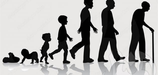 صورة جديد مراحل النمو البيولوجية عند علماء النفس