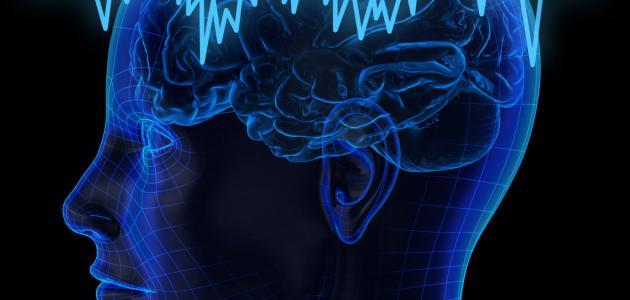 صورة جديد ما هو رسم المخ