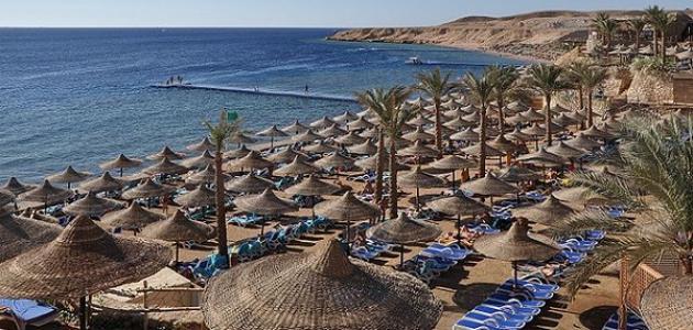 صورة جديد أين تقع شرم الشيخ على أي بحر