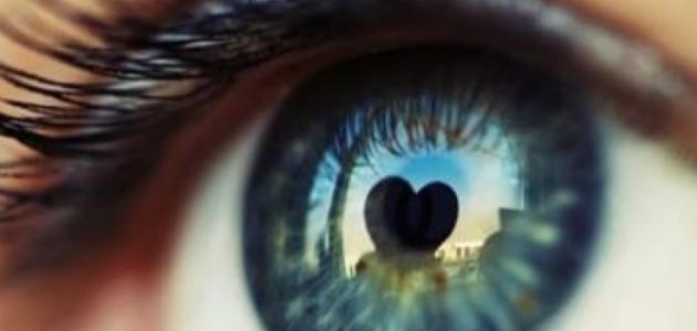 صورة جديد كيف تكون نظرات المحب