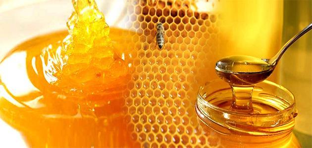 صورة جديد كيف نعرف العسل الأصلي