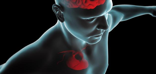 صورة جديد ما هي أعراض ثقب القلب