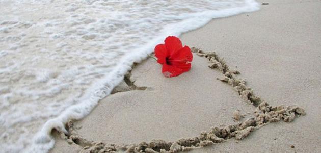 صورة جديد كلمات عن البحر والحب