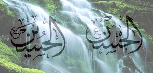 صورة جديد أحفاد الرسول صلى الله عليه وسلم