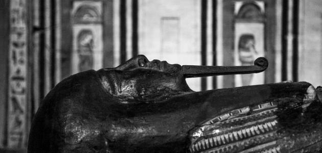 صورة جديد أين توجد جثة فرعون حالياً