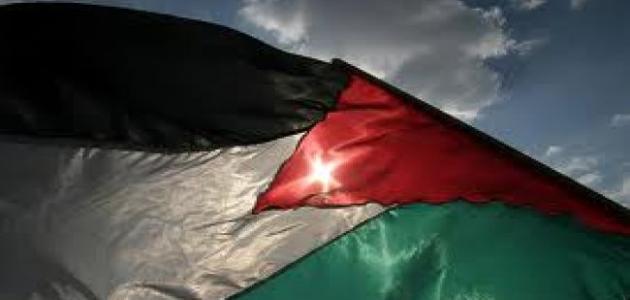 صورة جديد نبذة عن فلسطين