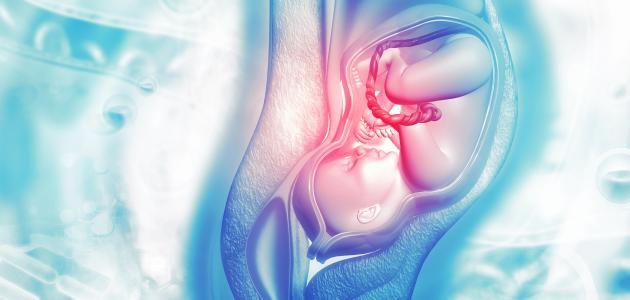 صورة جديد خطوات لتسهيل الولادة وفتح الرحم