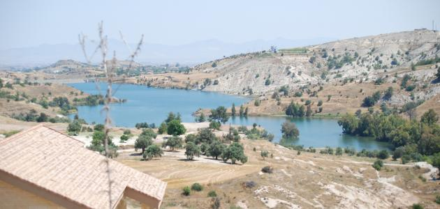 صورة جديد ما هي قبرص