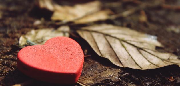 صورة جديد كلام عن الغيرة في الحب