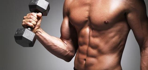 صورة جديد كم عدد عضلات جسم الانسان