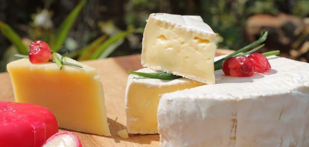 صورة جديد فوائد الجبن وأضراره