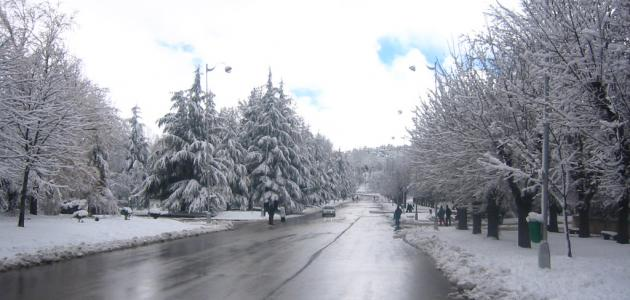 صورة جديد ما هو فصل الشتاء