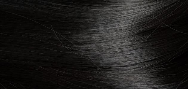 صورة جديد وصفات لتنعيم الشعر الجاف