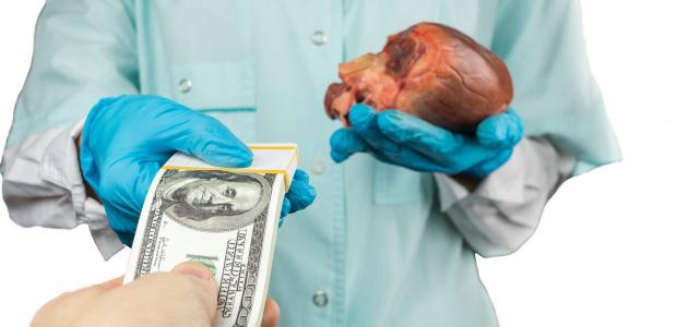 صورة جديد ما مظاهر وأسباب بيع وزرع الأعضاء البشرية