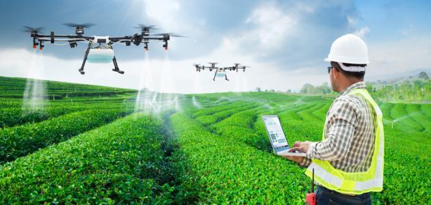 صورة جديد ما هي طرق الزراعة الحديثة