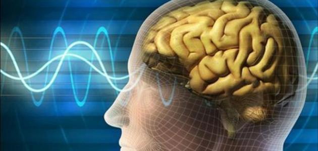 صورة جديد تعريف علم النفس الفسيولوجي