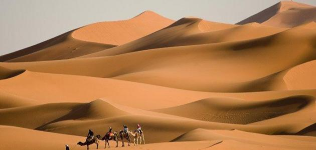 صورة جديد بحث عن أكبر صحراء في العالم