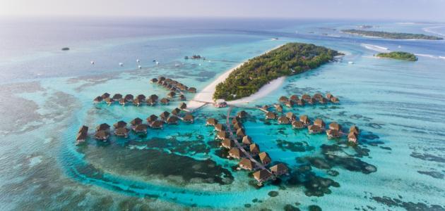 صورة جديد معلومات حول جزر المالديف