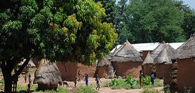 صورة جديد جمهورية بنين