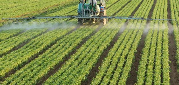 صورة جديد أهمية الزراعة في الوطن العربي