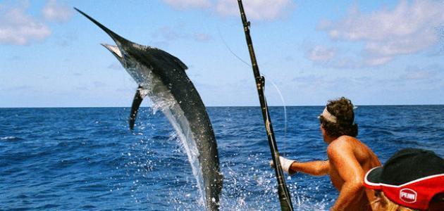 صورة جديد أفضل طعم لصيد السمك