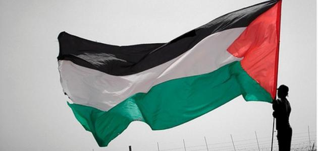 صورة جديد ما هي حدود فلسطين