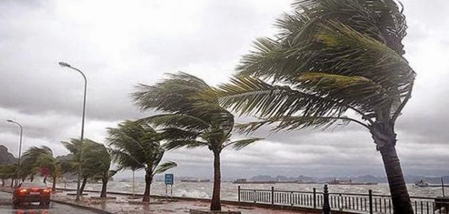 صورة جديد قوة الرياح