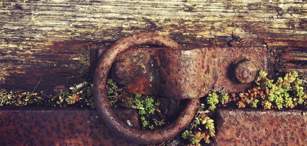 صورة جديد كيف يمكن حماية الحديد من الصدأ