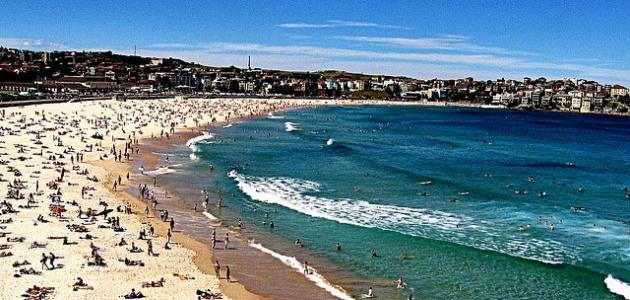 صورة جديد أين يقع شاطئ بوندي