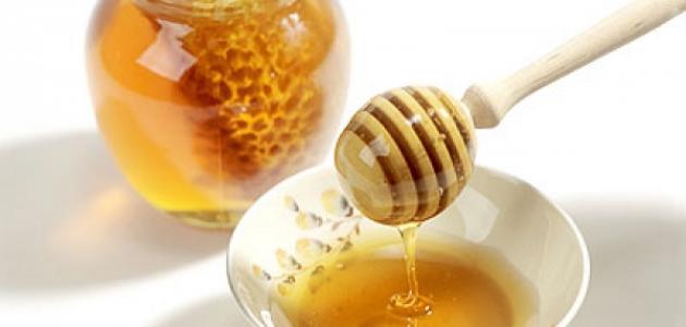 صورة جديد كيف يصنع العسل
