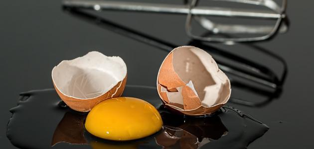 صورة جديد كم يحتوي البيض على بروتين