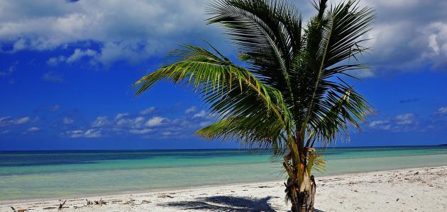 صورة جديد موقع جزيرة كوبا