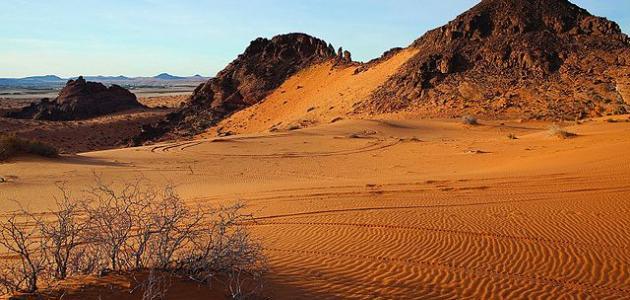 صورة جديد أكبر صحراء في الوطن العربي