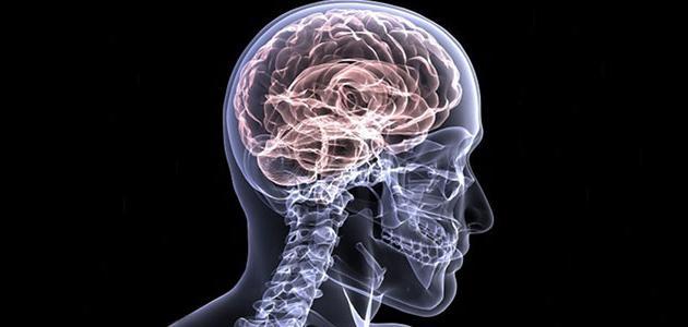 صورة جديد التهاب الدماغ