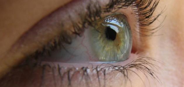 صورة جديد كيف نحافظ على سلامة العين