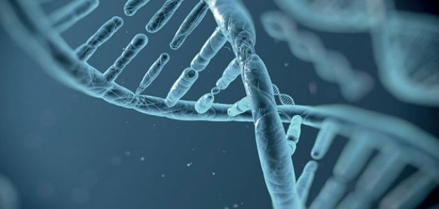 صورة جديد مفهوم علم الأحياء