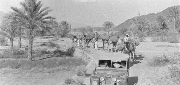 صورة جديد معلومات عن تاريخ عمان