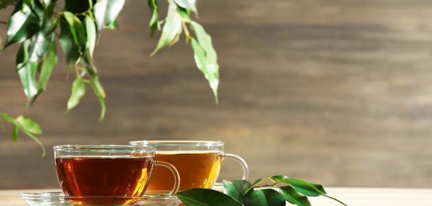 صورة جديد ما هي فوائد الشاي وأضراره