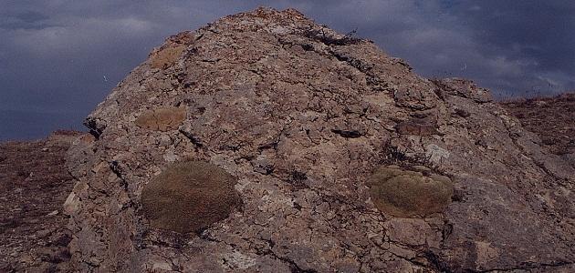 صورة جديد ما هو جبل الجودي