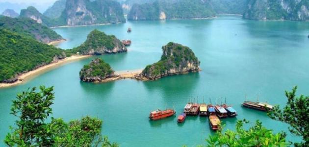 صورة جديد أين توجد فيتنام