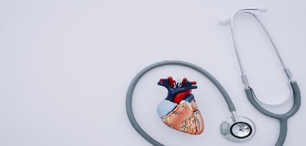 صورة جديد السمنة وأمراض القلب والشرايين