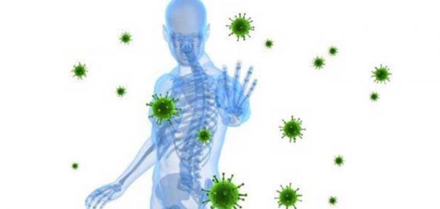 صورة جديد 8 نصائح لتقوية جهاز المناعة