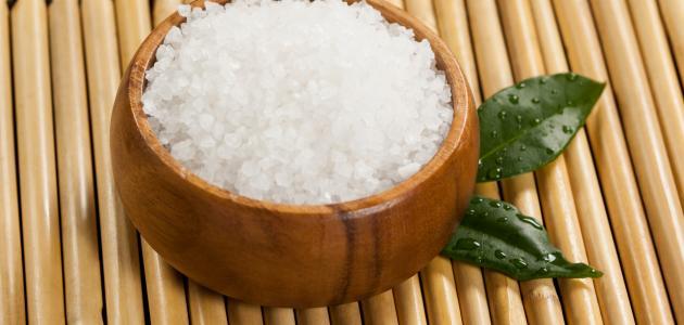 صورة جديد ما فائدة الملح للشعر