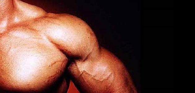 صورة جديد طريقة تقوية العضلات بسرعة