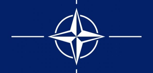 صورة جديد ما هو حزب الناتو