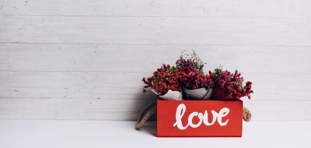 صورة جديد أجمل قصائد الحب والعشق