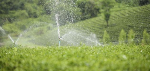 صورة جديد استخدامات الماء
