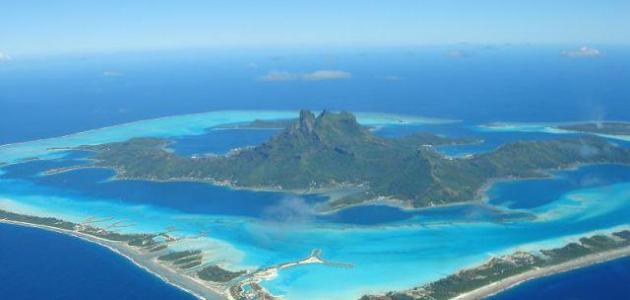 صورة جديد بحث عن جزيرة فرسان